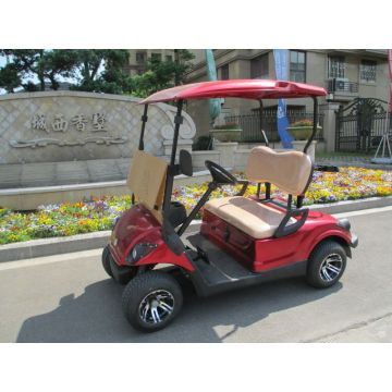 two people small gas power golf cart for sale cheap