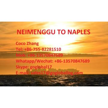 Mainland Neimenggu Sea Freight to Italy Naples