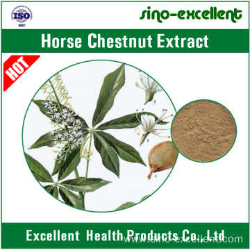 Aescin or Escin Horse Chestnut Extract