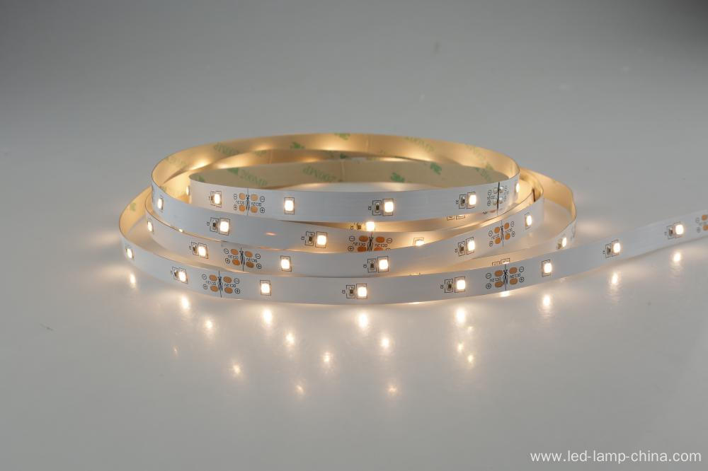 12V high brightness 60 chips SMD2835 led strip Light