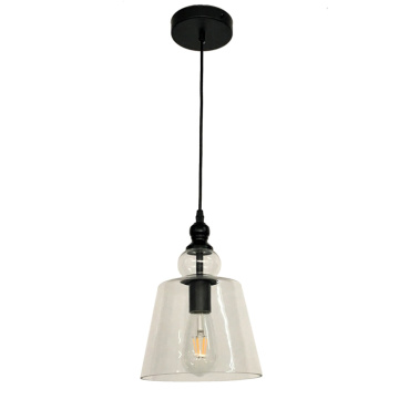 Clear Glass Pendant Light Vintage Edison Pendant Lamp