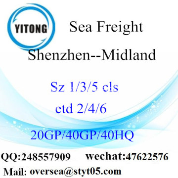 Shenzhen Port Sea Freight Shipping To Midland