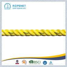 China for PP Danline Rope High Quality Yellow Polyproplene Rope export to Brazil Wholesale
