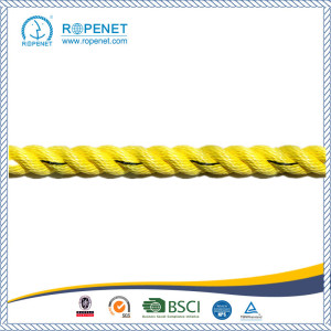 Factory Supply for 3 Strand Polypropylene Rope Super High Quality Twisted PP Danline Rope export to British Indian Ocean Territory Factory