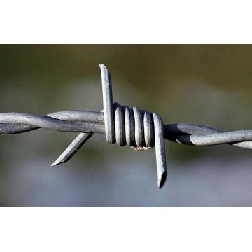 Cheap Price Wholesale Galvanized Barbed Wire Customizable