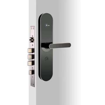 EVDAL0166-A6  smart cloud lock