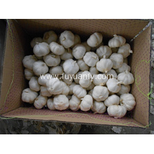 High quality factory for Pure White Garlic Pure white garlic high grade for sale export to United Kingdom Exporter