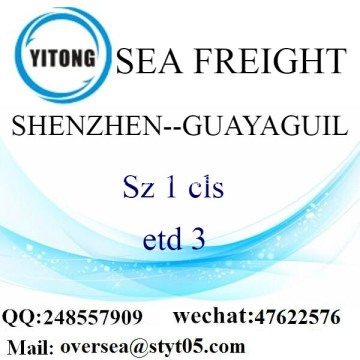 Shenzhen Port LCL Consolidation To Guayaguil
