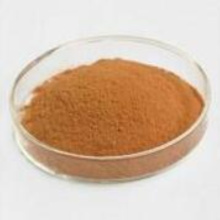 Certified Hot sale Anti-cancer Goji Polysaccharides