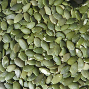 Chinese GWS pumpkin seeds kernel market price