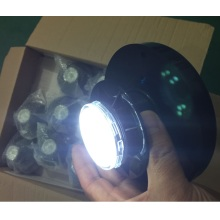 Rapid Delivery for Garden Motion Lights Solar Panel Lights with Motion Sensor export to France Wholesale