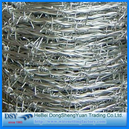 Competitive Price of the Barbed Iron Wire