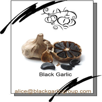 Enhance immune function of black garlic