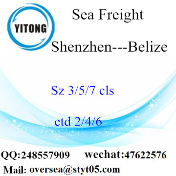 Shenzhen Port LCL Consolidation To Belize