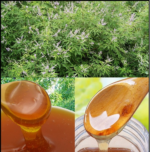 Vitex Honey Bases