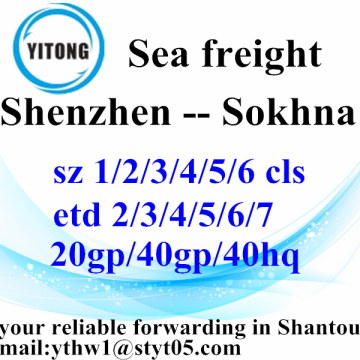 Shenzhen Shipping Services to Sokhna