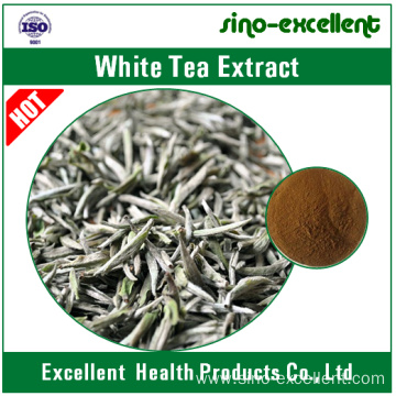 natural White Tea Extract