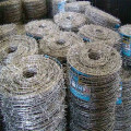 Low Carbon Steel Electro Galvanized Barbed Wire