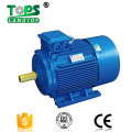 5HP Three Phase Electric Motor For Sale