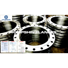 Raised Face RF EN1092-1 Slip On Plate Flange