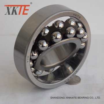 Nylon Cage Self-aligning Ball Bearing 1310 ATN