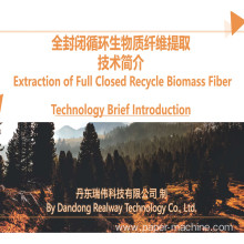 Biomass Pulping Rice Straw Pulping Machine