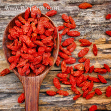 Conventional Plump Goji Berries Factory Supply