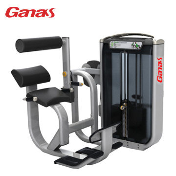 Professional Gym Exercise Equipment Back Extension
