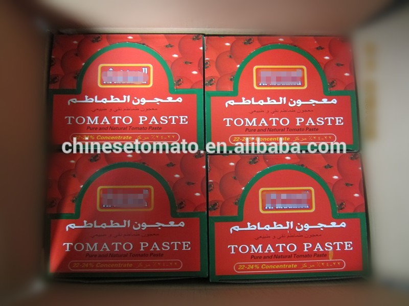 Color Printing Laminated Plastic Tomato Paste Sachet