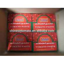 Color Printing Laminated Plastic Tomato Paste