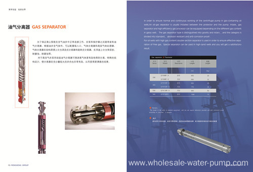Submersible electric pump separator
