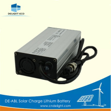 DELIGHT Rechargeable Lithium Battery with Charger