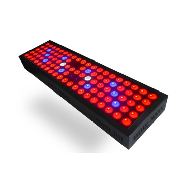 High Quality Low Prices 300W LED Grow light