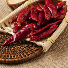 chilli price 3-7cm tianying chilly red hot chili