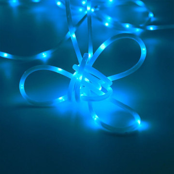 Professional for Led Rope Light Blue Tube LED Battery Powered String Rope Light supply to Guatemala Manufacturer