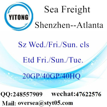 Shenzhen Port Sea Freight Shipping To Atlanta