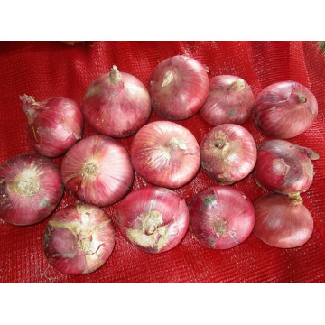 Sizes 3.0-5.0cm Fresh Red Onion