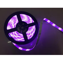 DC24V Waterproof Purple Flexible LED Strip