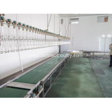 Cheap for Live Bird Receiving Unit, Chicken Hanging Unit, Live Bird Reception Exporters Crates conveyor at live bird reception export to Bulgaria Manufacturer