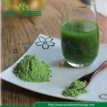 Organic Wheat grass Powder superfood powder