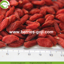 Factory Wholesale For Sale Dried Fruit Wolfberry