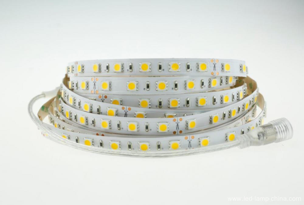 OEM and ODM LED Strip LED Tape SMD5050