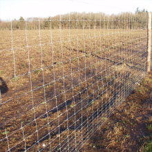 Galvanized Hinged Joint Fencing for Ranch Farm