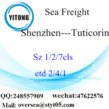 Shenzhen Port LCL Consolidation To Tuticorin