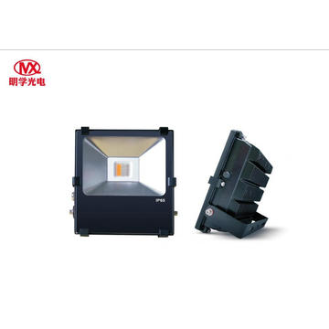 50W Outdoor Waterproof RGBW LED Flood light