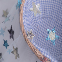 Wholesale Price China for Multicolor Sequins Embroidery Fabric Polyester Party Dress Multicolor Star Sequin Embroidery export to Guinea Supplier
