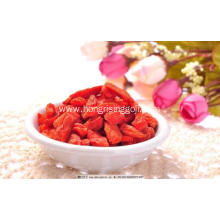 conventional goji berries 550 bulk wolfberries