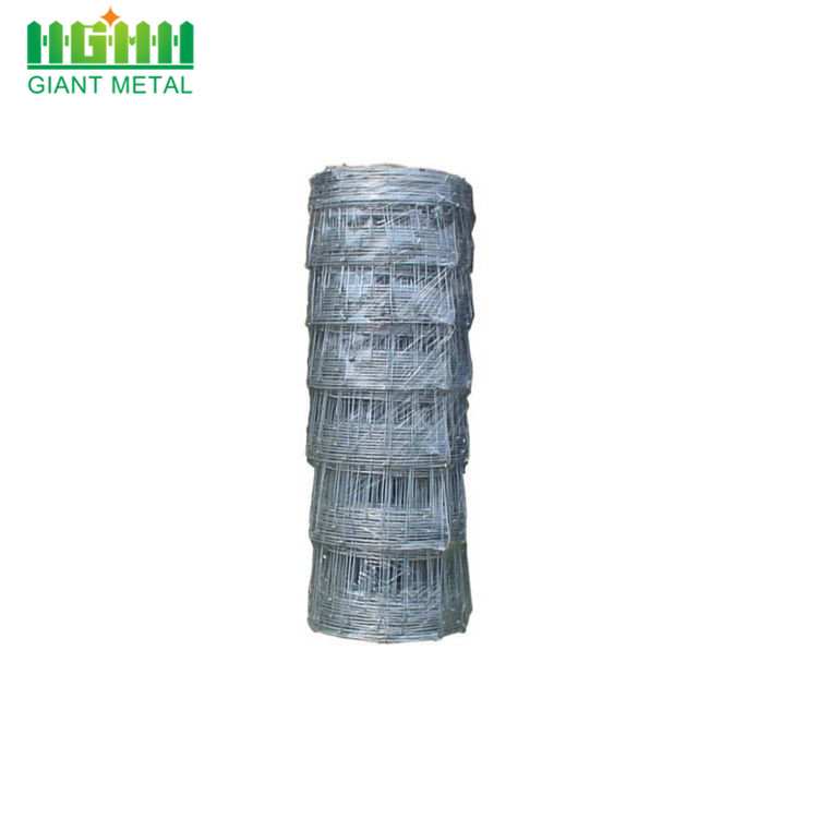 Cheap Galvanized Wire Mesh Field Fence for Sale