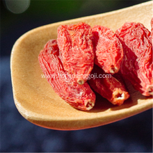 Free Sample Low Pestcide Goji