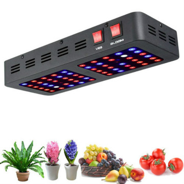 Totonu o le Hydroponic LED Grow Light